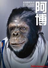 SOHO中国携手奥美中国发布新品牌传播活动