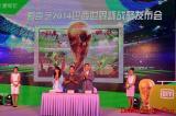 加多宝、天弘基金携手爱奇艺发布世界杯战略