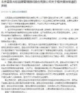"""蓝色光标回应""""抽屉协议"""":出具承诺函属赵文权个人行为"""