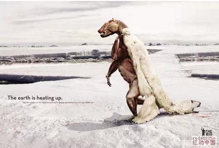 全球气候变暖,北极熊面临生存问题 公益广告图片
