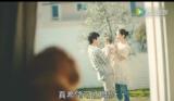 亚马逊日本广告:如果我变成狮子,你会爱我吗?